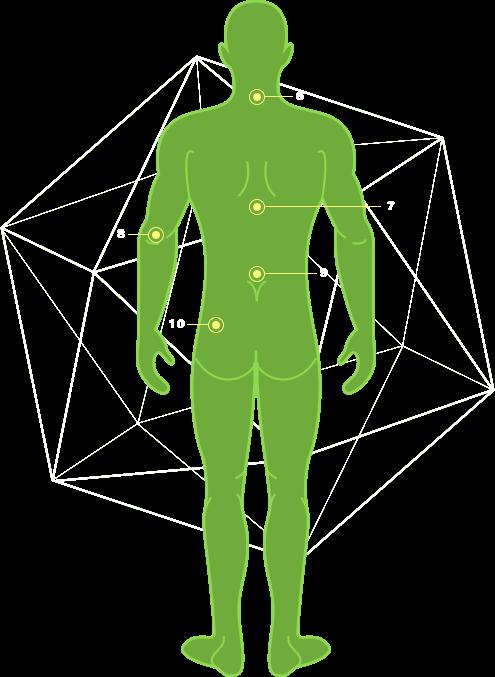 cuerpo columna quiropractico medellin